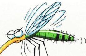 A héten tíz megyében védekeznek a szúnyogok ellen