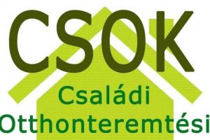 Falusi CSOK Pest megye